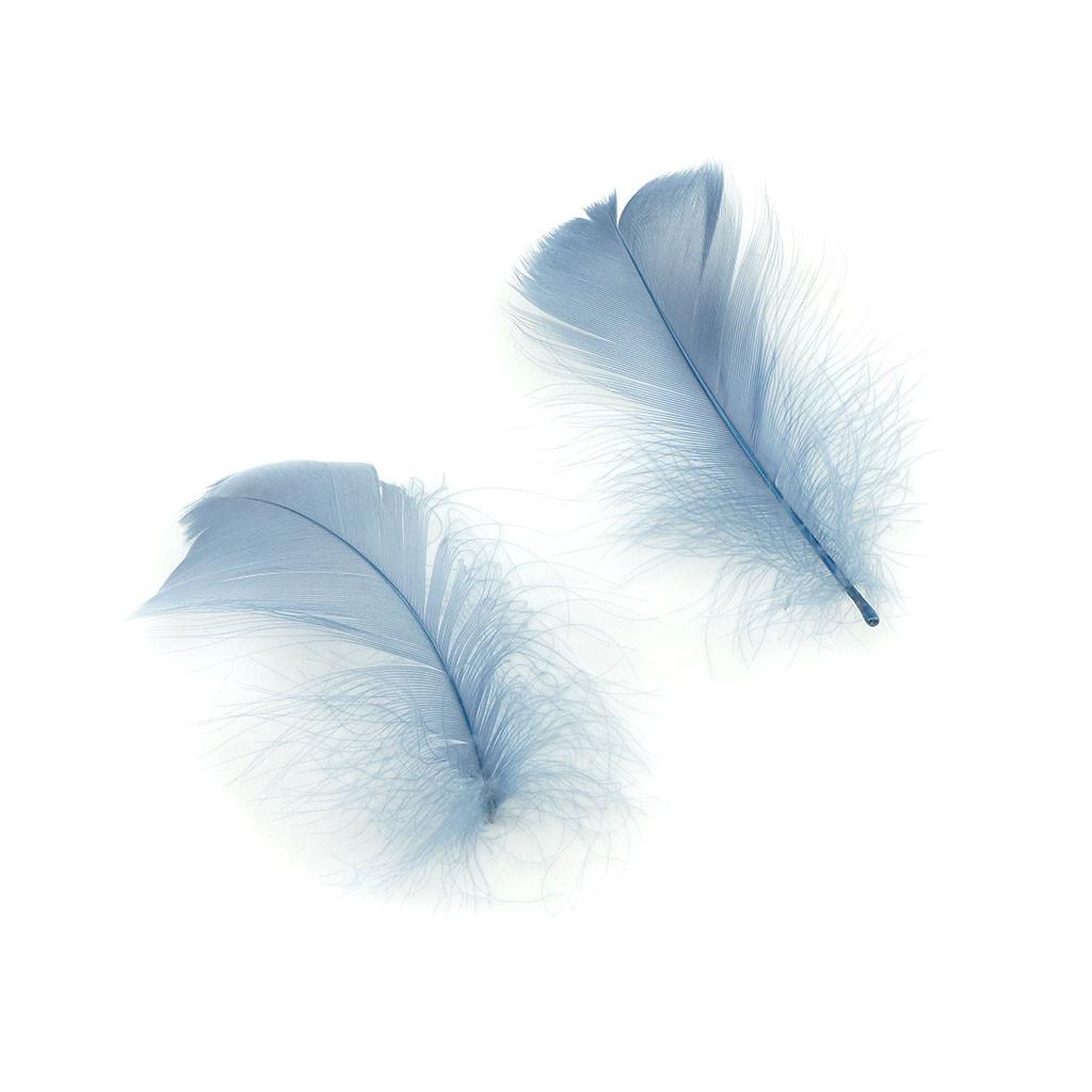 Bílé husí peří